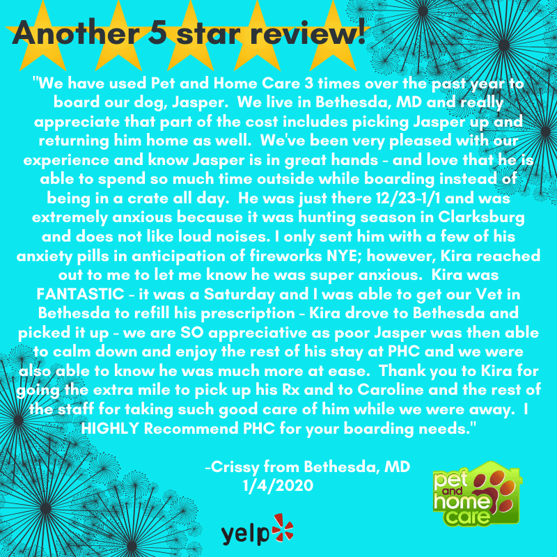 We Love Your Reviews