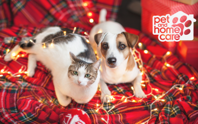 The Definitive Howliday Pet Care Guide